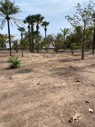 Très grand et rare terrain en 2ème ligne de mer à vendre à Cap Skirring. image 2