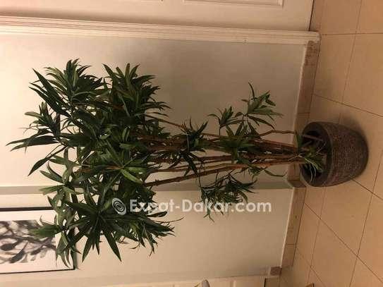 Plante d'intérieur artificielle très bon état image 1