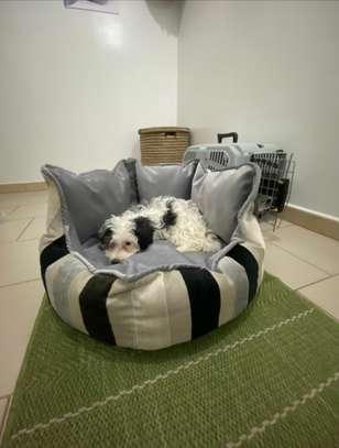 Panier pour chien image 4