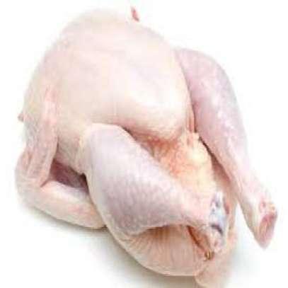 Fournisseur de poulets de chair en gros et en détail image 2
