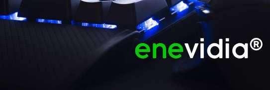 Enevidia ® image 2