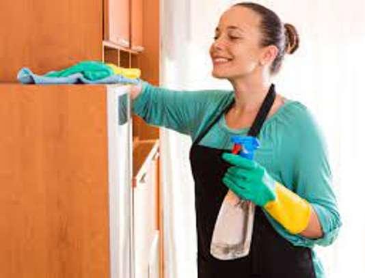 femme de ménage image 1