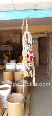 Mbengue éleveurs image 1