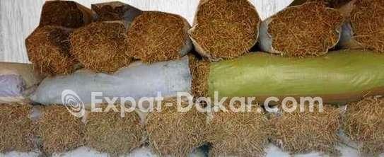 Arrivage de 1000 sacs de fouins ( Gnogne) image 2