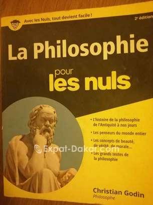 """A vendre """"La philosophie pour les nuls"""" image 1"""