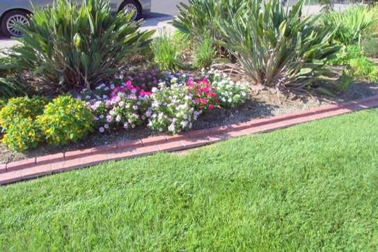 Best Gardening & Lawn Mowing Services|Contact Us Today. image 8