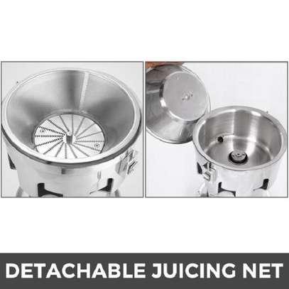 Heavy Duty Commercial Fruit Juicer Fruit Extractor 100KG Per Hour image 2