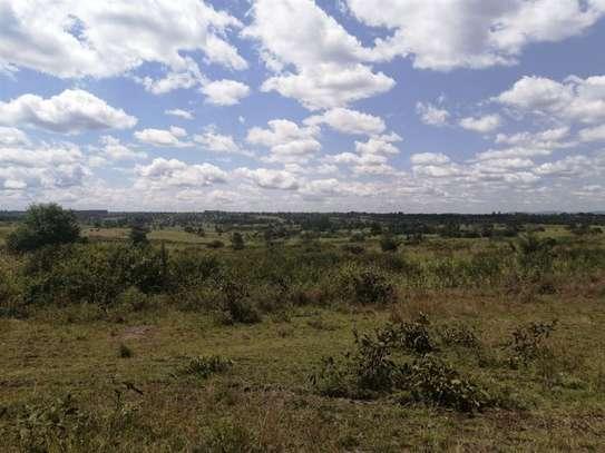 Kandara - Land, Commercial Land, Residential Land image 4