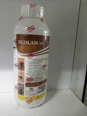 BEDLAM PESTICIDE 200SL 1LITRE image 2