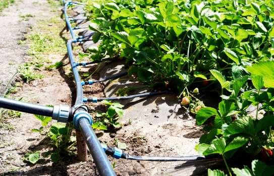 Lawn Sprinkler & Farm Irrigation Systems image 3