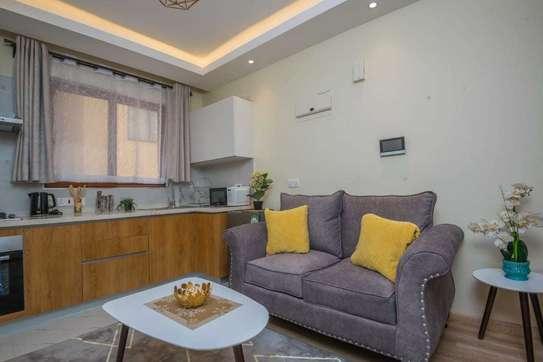 Stunningly Luxurious 1bedroom Fully Furnished In Kileleshwa image 7