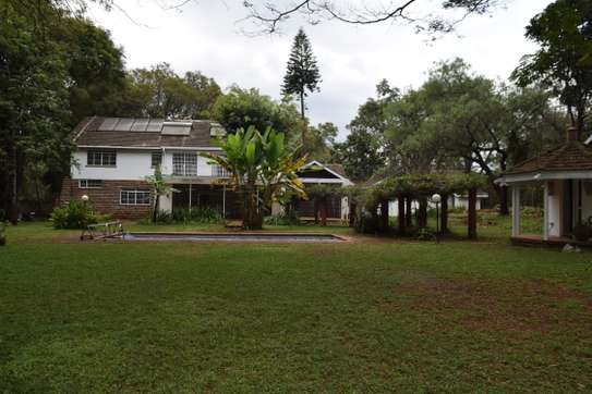 5 bedroom house for rent in Nyari image 15