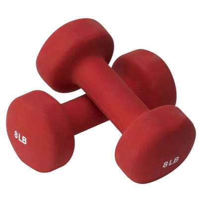8LB (3.6kg dumbbells) image 1
