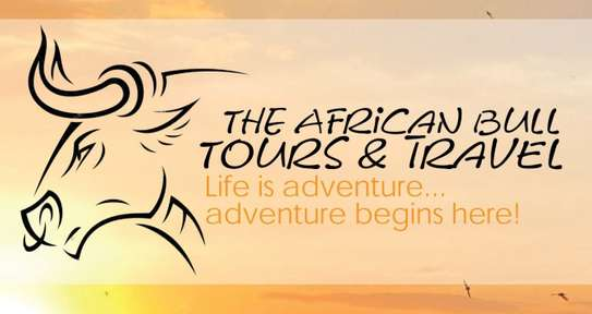 The African Bull Tours & Travel