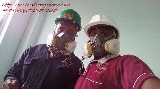 Acebug Fumigation Company image 1