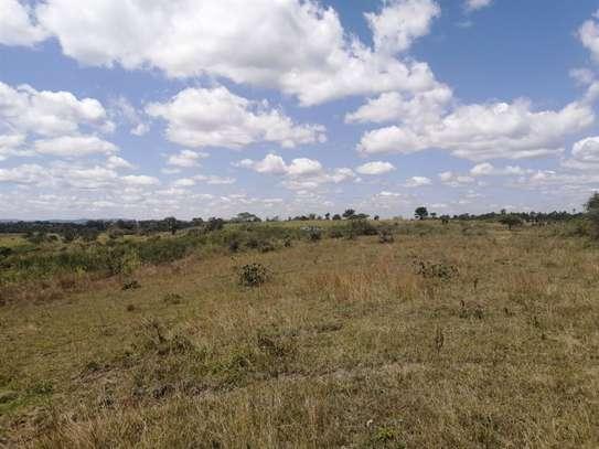 Kandara - Land, Commercial Land, Residential Land image 3