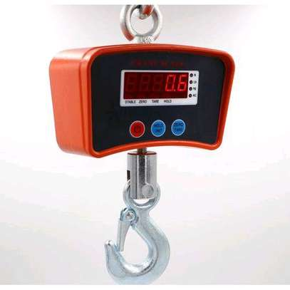 500 kgs hanging scale image 2
