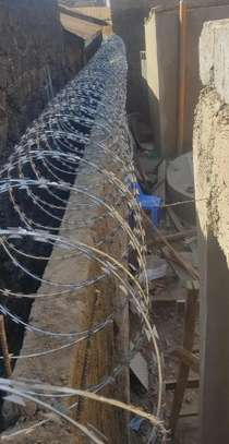 High End Green Double Galvanized Fencing Razor Wire image 3