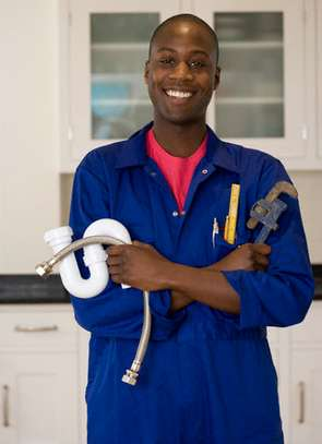 Hire a Plumber   Contact the finest plumbing specialists from Bestcare.Get Free Quote image 2