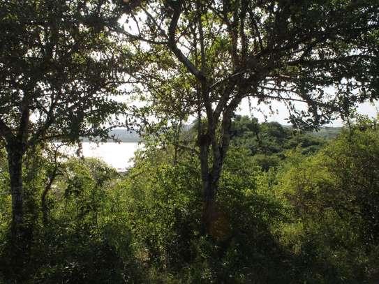 Kilifi - Land image 3