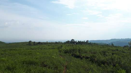 500 m² land for sale in Riat Hills image 11