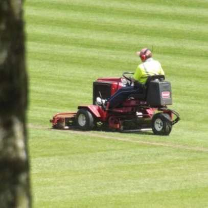 Lawn mowing services in Kenya image 1
