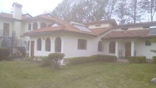 To let in Karen, Bogani East Road. 2 Br and 3Br image 1