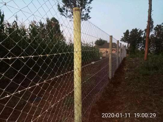 Treated poles and Fencing services image 3