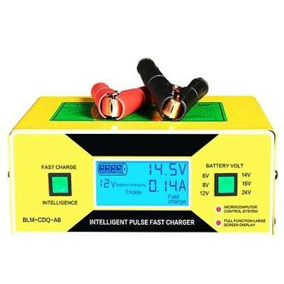 BATTERY CHARGER Blm 168 image 1