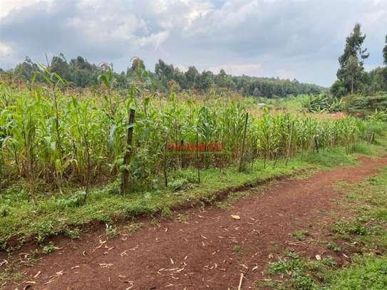 Kikuyu Town - Residential Land, Land image 9