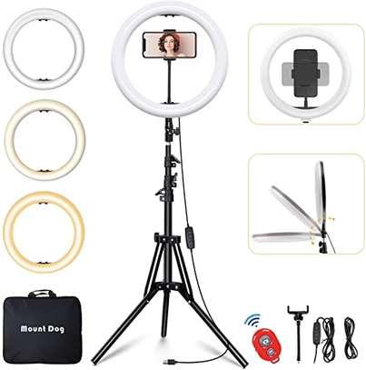 Studio 14-inch Diameter LED Ring Light image 1