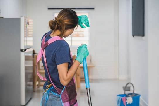 Need Professional & Affordable Cleaning/Pest Control/Gardening & Landscaping Services/Security Services & Housekeeping ? image 5