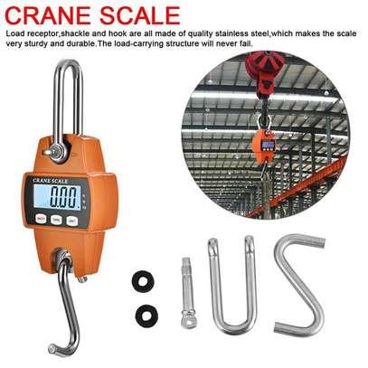 Mini Crane Scale Portable LCD Digital 300kg Heavy image 1