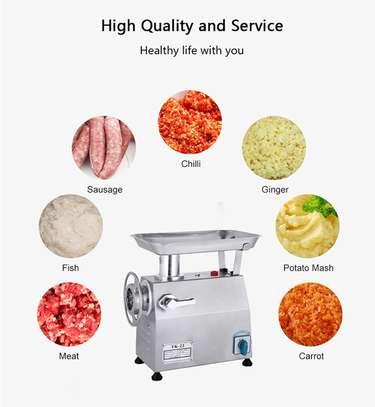 Portable electric meat grinder/meat mincer tk 22 image 1