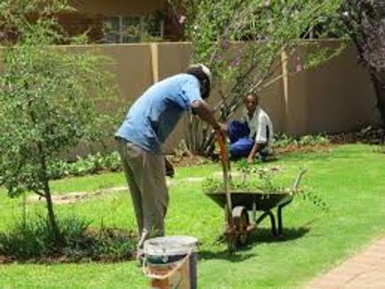 Professional Garden Layout Landscaping and Designs. Bestcare Landscaping Services. image 3