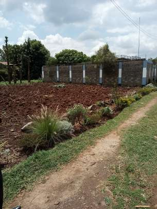 Land for sale in Kikuyu image 7