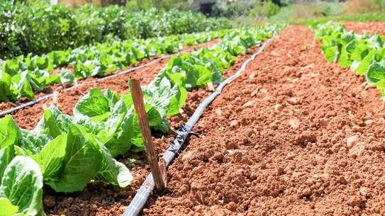 Lawn Sprinkler & Farm Irrigation Systems image 4