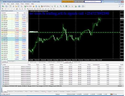 we train forex trading and sell fx signals image 4
