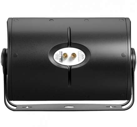 Definitive Technology AW5500 Outdoor All-Weather Loudspeaker image 3