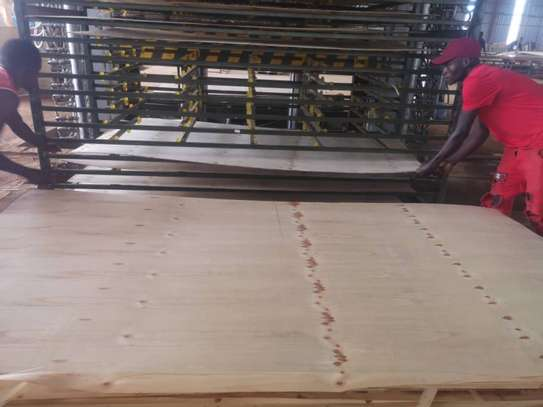 Plywood 3mm wholesale