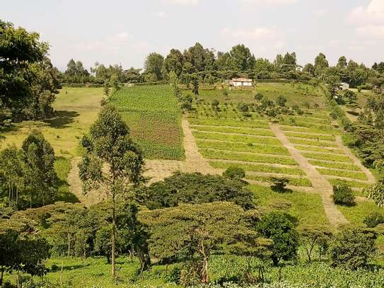 1/8,  1/4 and full acres available for sale in Upper Matasia  (Kahara), area, Ngong Hills. image 6