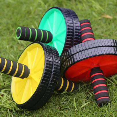 Gym roller image 3