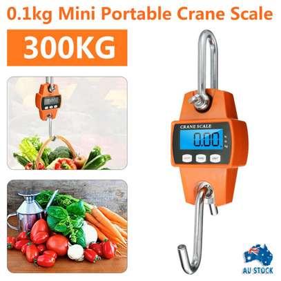300kgs Crane Scale image 1