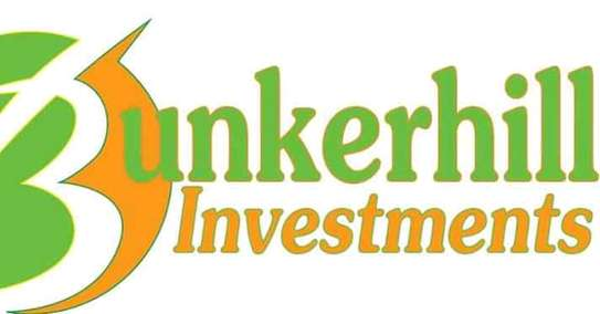 Bunkerhill investments image 1