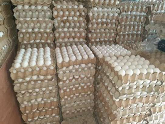 Fresh Brown and White Farm chicken Table eggs image 2