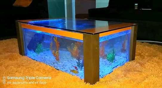 Coffee Table Aquariums. image 3