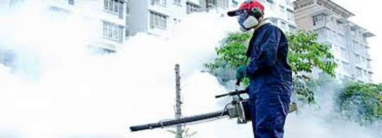 Bed Bug Fumigation & Pest Control Specialists image 6
