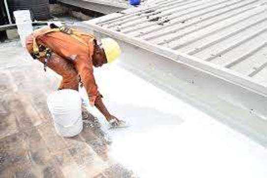Hire Professional Painters When You Need Them image 5