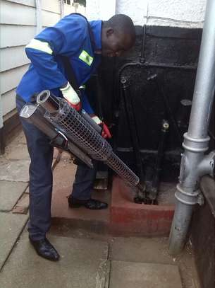 Best Pest Control (Bedbugs, Insects, Rodents, Termites) Professionals Nairobi image 2