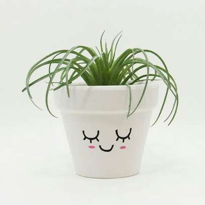 Personalized Succulents image 1